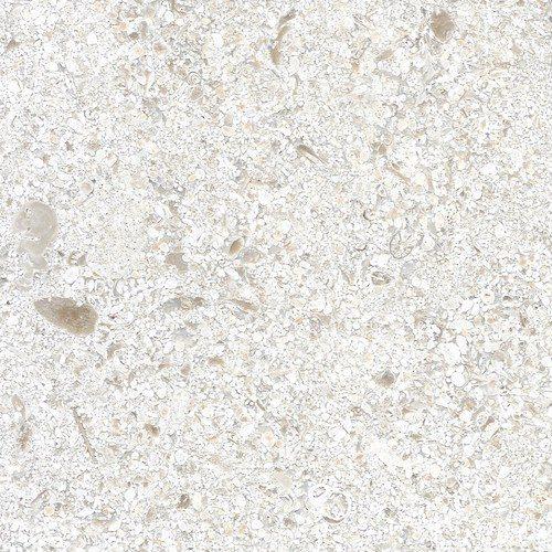 Portuguese Limestone Mirabelle